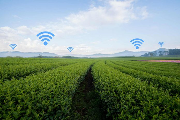 smart-farming-wifi-xorafia