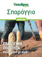 Σπαράγγια: Καλλιέργεια με κέρδη και εξαγώγιμη ποιότητα