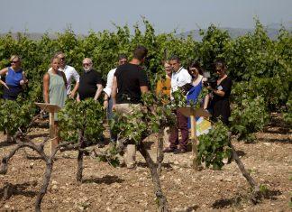Στη Κρήτη το μεγάλο εγχείρημα διασύνδεσης τουρισμού και τοπικής παραγωγής