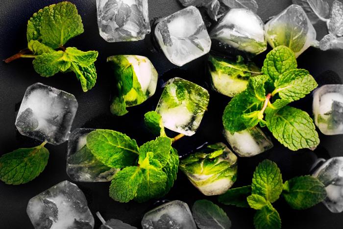 Σε Μαγνησία (Αλμυρό, Σούρπη) και Φάρσαλα χτυπά η καρδιά των αρωματικών φαρμακευτικών φυτών στον θεσσαλικό κάμπο