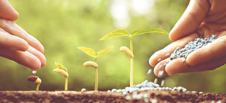 Λίπανση & φυτοπροστασία 2018: Το «πότε» και «πόσο» κρίνουν το βέλτιστο αποτέλεσμα της λίπανσης