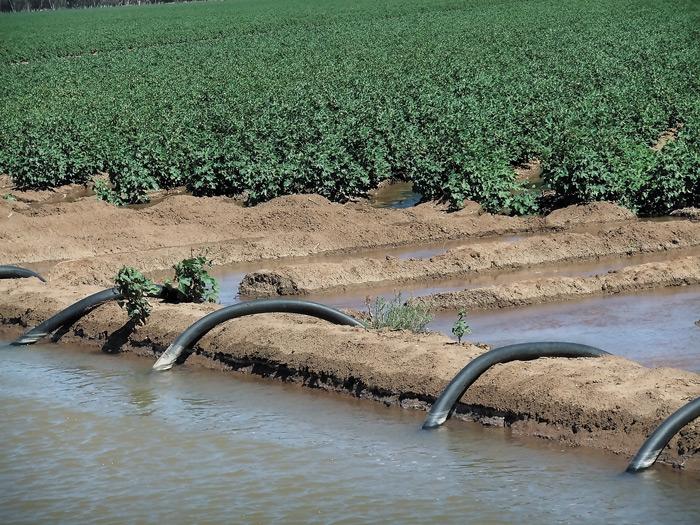 Ο κατάλληλος συνδυασμός πρακτικών για την ορθολογική χρήση του νερού