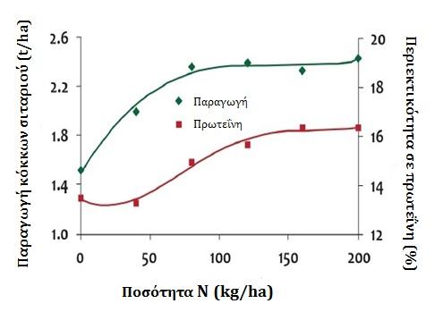 Ανταπόκριση της παραγωγής και της περιεκτικότητας σε πρωτεΐνη των κόκκων σιταριού στην προσθήκη Αζώτου