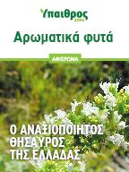 Αρωματικά φυτά: 13 είδη που θα ανατάξουν τον τομέα