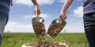 Σιτηρέσιο: Διατροφή και απόδοση