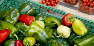 Organic food: boosting EU production and enhancing consumer trust