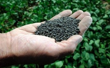 Organic fertilizer out of waste water
