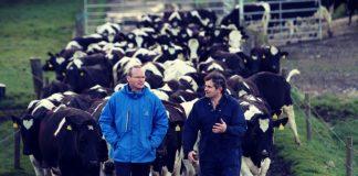 dairy-Cooperatives-Ireland