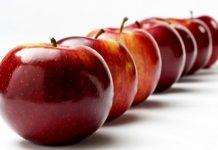 Παραλαβές μήλων για χυμοποίηση από τον Κτηνοτροφικό Συνεταιρισμό Αρκαδίας