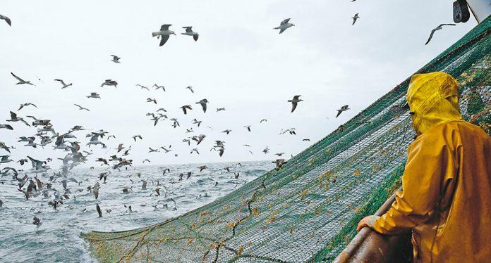 Η ελληνική αλιεία έχει εισέλθει στη φάση της συρρίκνωσης
