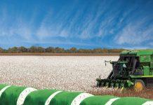 βαμβακοπαραγωγός-βαμβακοκαλλιέργεια