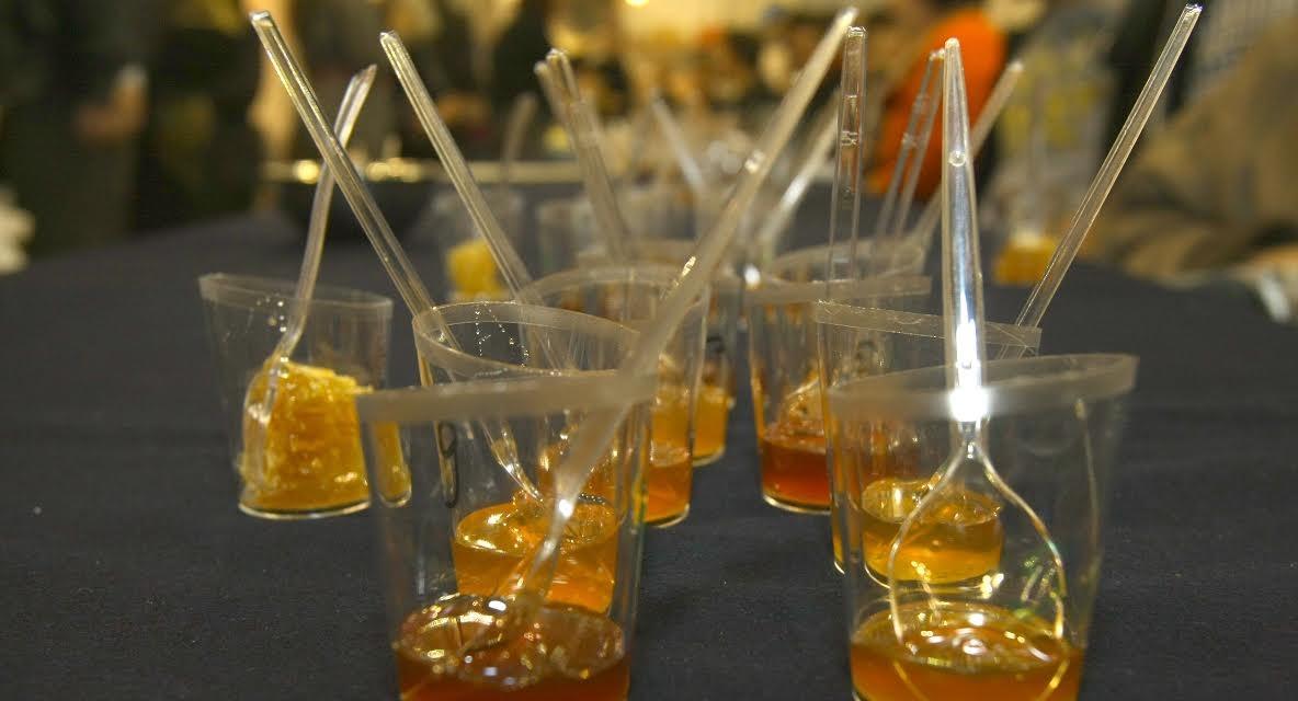 Τον Δεκέμβριο το 5ο Πανελλήνιο Μελισσοκομικό Συνέδριο