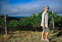 Αναγνωρισμένα κρασιά στην αγροτουριστική μονάδα της Castell'in Villa