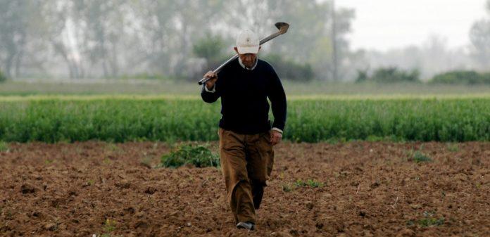 «Πόρτα» για επιστροφή φόρου σε αγρότες - εξαγωγείς