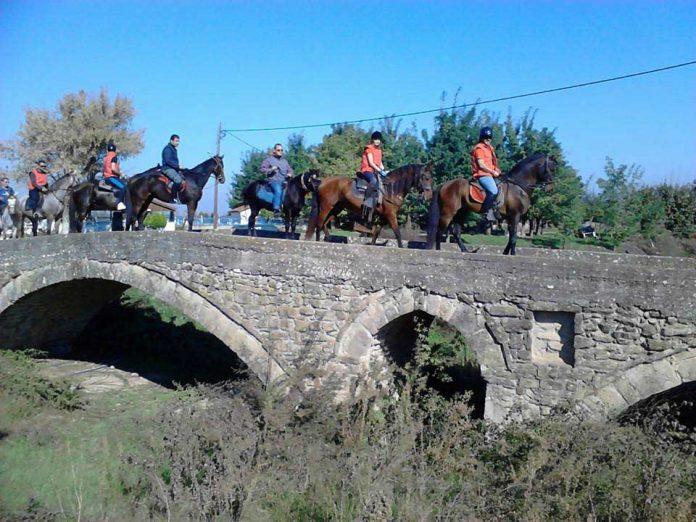 Βγήκαν τα… άλογα στα Μεγάλα Καλύβια Τρικάλων