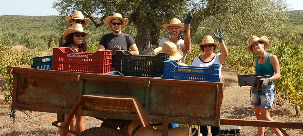 Φάρμα και ξενοδοχειακή μονάδα αγροτουρισμού, Γούβες Λακωνίας