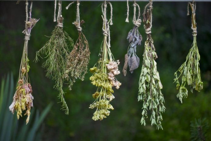 Κρητικό Ίαμα - Από το χωράφι, στο φαρμακείο