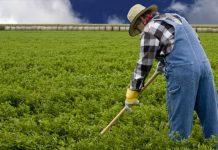 Ενεργοποίηση ρήτρας αναθεώρησης δικαιούχων των γεωργοπεριβαλλοντικών δράσεων οι υποχρεώσεις των οποίων μεταφέρονται ως ανειλημμένες νέο στο ΠΑΑ