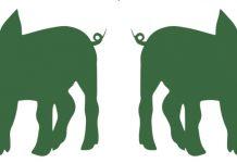 Το «πράσινο χοιρινό» τα βάζει με το φαινόμενο του θερμοκηπίου