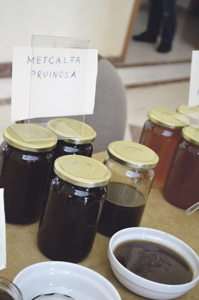 Σουφλί: Μέλι από το έντοµο metcalfa. Κι όµως υπάρχει!