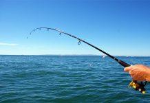Κάλεσμα του ΙΝΑΛΕ σε ερασιτέχνες αλιείς για τη συμπλήρωση αλιευτικού ημερολογίου