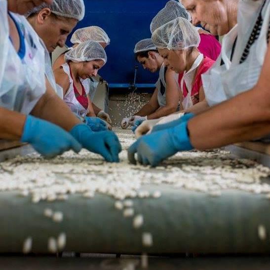 Αγροτικός συνεργατισμός vs κρίση στις Πηγές Νέστου