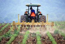 Κομισιόν: Εγκρίθηκαν όλα προγράμματα αγροτικής ανάπτυξης μεταξύ αυτών και το ελληνικό