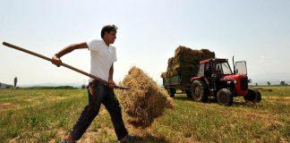 Οδηγίες ΟΠΕΚΕΠΕ για την πληρωμή ανειλημμένων υποχρεώσεων σε νέους αγρότες του 2009