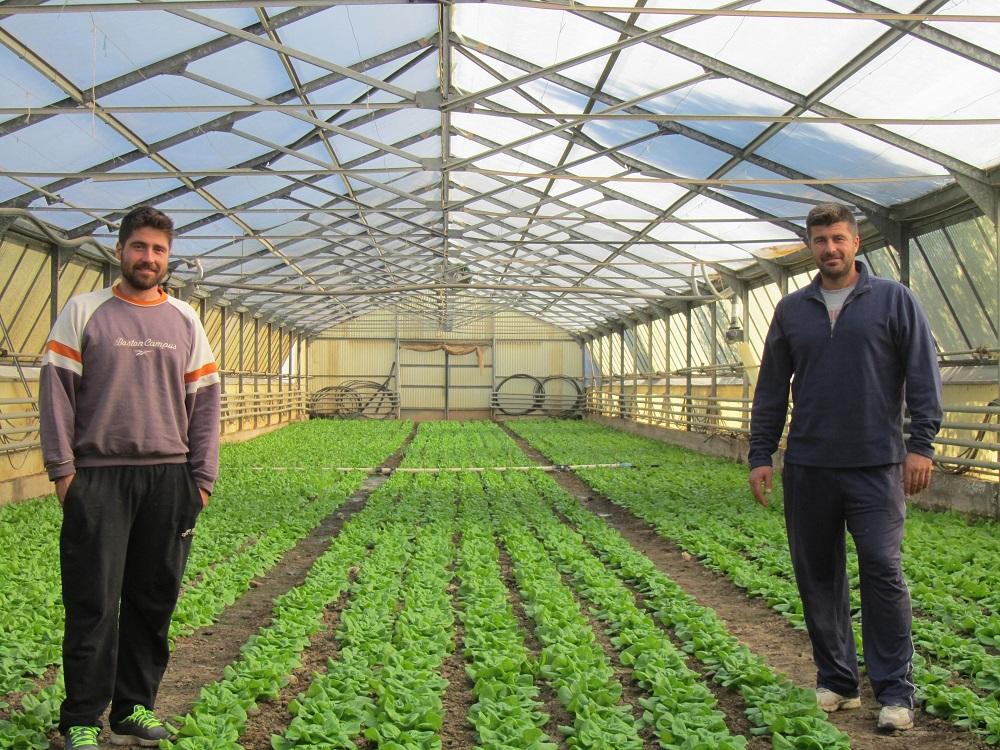 Μαραθώνας: Κλειστό υδροπονικό σύστημα καλλιέργειας