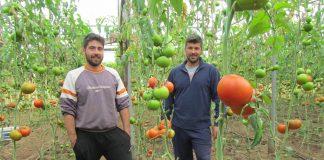 Μαραθώνας: Η καινοτομία στο χωράφι