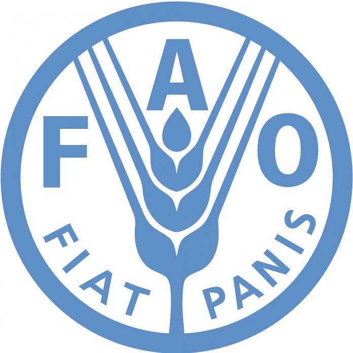 FAO: 795 εκατ. άνθρωποι υποφέρουν από χρόνια πείνα