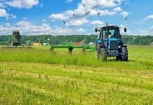 To 1/3 της καλλιεργήσιμης γης του πλανήτη έχει χαθεί τα τελευταία 40 χρόνια