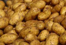 Δέσμευση 6 τόνων πατάτας σε επιχείρηση του Ρέντη