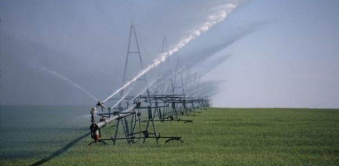 Κινδυνεύει η αγροτική παραγωγή της Ηλείας