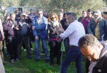 Με επιτυχία διεξήχθη το σεμινάριο του Ινστιτούτου Χανίων για την ελαιοκομία στη Στυλίδα
