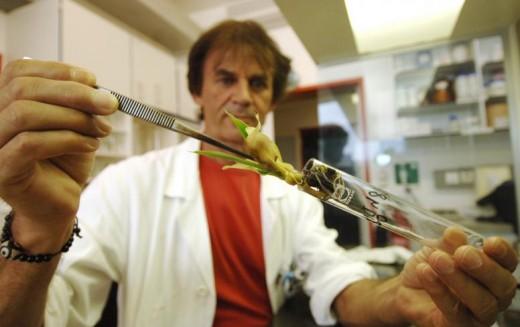 Οι βιοκαλλιεργητές προειδοποιούν για τις