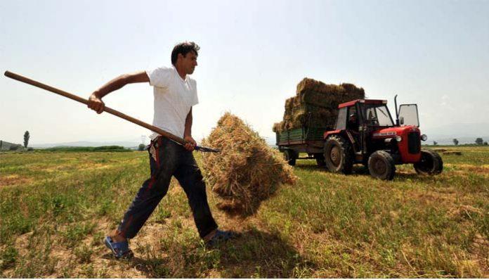 Mε το «καλημέρα» οι αυξήσεις στις ασφαλιστικές εισφορές για τους αγρότες