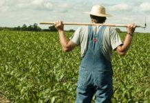 Φτωχότερος όλων ο Έλληνας αγρότης, παρά την αύξηση του αγροτικού εισοδήματος
