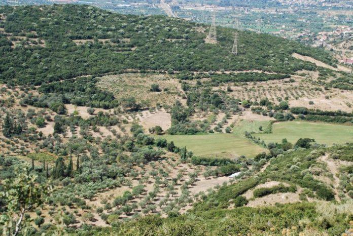 Προστασία της γεωργικής γης υψηλής παραγωγικότητας ζητάει το ΓΕΩΤΕΕ Κεντρικής Μακεδονίας