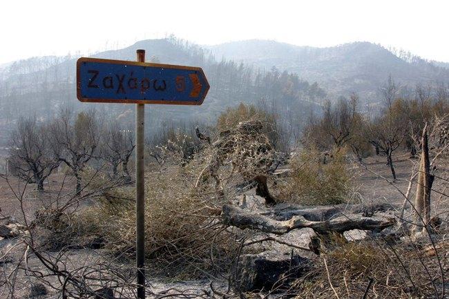 Παράταση υποβολής προτάσεων από νέους δικαιούχους στις πυρόπληκτες περιοχές της Ηλείας