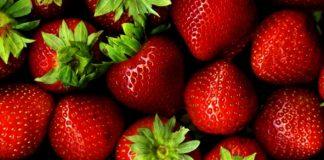 Φράουλα: Μείωση τιμών λόγω αυξημένης παραγωγής σε Ιταλία και Ισπανία