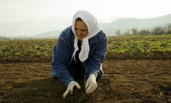 Παρατείνεται έως 16/11 η υποβολή αιτήσεων για το βοήθημα σε πολύτεκνες αγρότισσες μητέρες