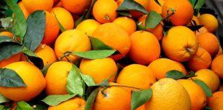 Δέσμευση 1,5 τόνου πορτοκαλιών σε επιχείρηση του Πειραιά