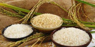 Παράταση έως τις 31-3-2016 για τη συνδεδεμένη ενίσχυση ρυζιού