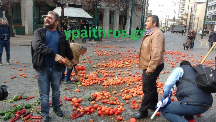 ντομάτες αγρότες