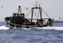 Αποστόλου: Από την Ε.Ε. θα κριθεί η χρήση της βιντζότραΠρόσθετα διαχειριστικά Μέτρα για την αλιεία της Βιντζότρατας