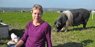 Η Helen Browning και η βιολογική χοιροτροφία