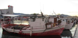 Ψηφίστηκαν οι πρώτες νομοθετικές πρωτοβουλίες για την αλιεία στο νομοσχέδιο του Υπουργείου Τουρισμού