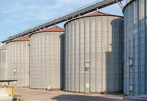 Απούλητη η μισή παραγωγή ρυζιού στις Σέρρες
