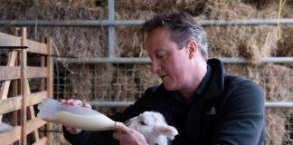 Το Brexit και οι αγρότες